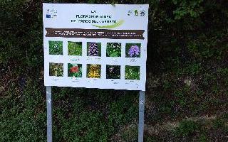 Parco del Cardeto - installato tabellone sulla flora spontanea